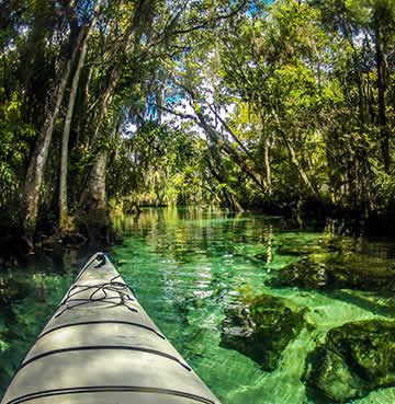Point of view image of a kayak making its way through Orlando's waterways