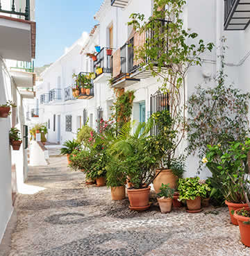 Whitewashed houses and cobbled streets are decorated with flower pots and plenty of greenery in Frigiliana