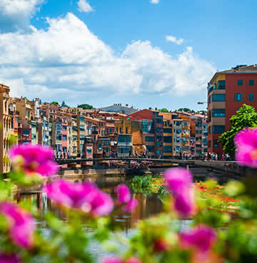 Bright coloured architecture of Girona sits around a river, with hot pink flowers in the foreground.