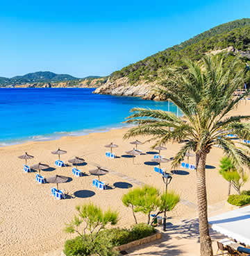 Golden sands, sapphire blue seas and swaying palms at a beach scene in Ibiza