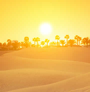 Golden sands and rolling dunes at Maspalomas