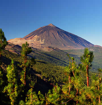 Towering Mount Teide watching over the luscious, green national park of Tenerife