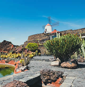 Volcanic rock formations and a traditional windmill take pride of place at the Jardín de Cactus
