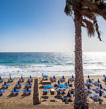Sunloungers and parasols are arranged in rows on a beach in Puerto del Carmen