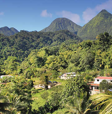 Lush rainforest and mountains in Dominican Republic