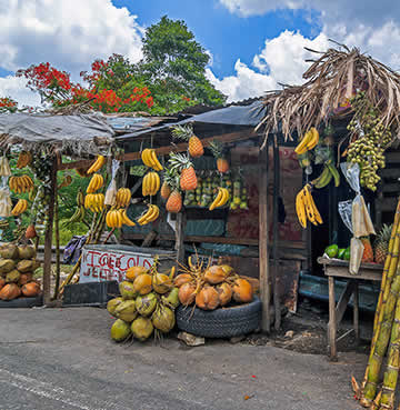 Fresh fruit and vegetable market stall in Jamaica, Caribbean
