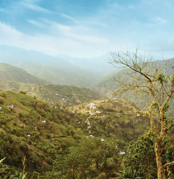View from the Blue Mountains, Jamaica