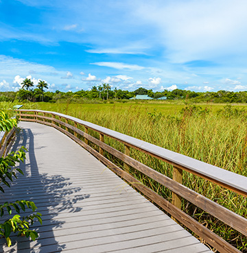 Walking trail in the Everglades National Park, Florida