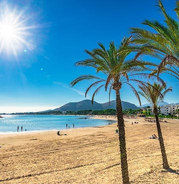 Palm trees and sandy beach of Alcudia, Mallorca, looking out towards the mountains