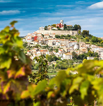 Traditional Istrian village perched on a luscious hillside
