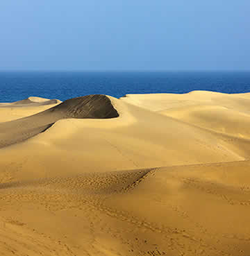 Golden sand dunes at Maspalomas in Gran Canaria