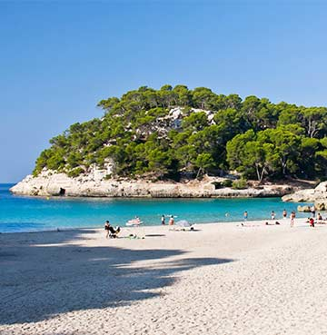 Golden sands of Cala Mitjana, with pine trees in the background - Menorca