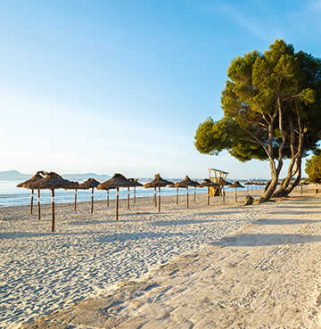 Powder-white sands and straw parasols line the beach at Alcúdia