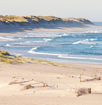 The sand dunes and quiet seclusion of Praia Do Cabedelo in Portugal