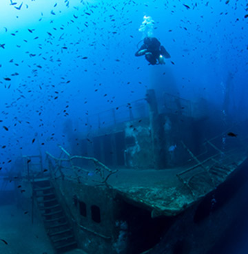 A deep sea diver in Malta floats above a shipwreck. Hundreds of fish swim around the diver.