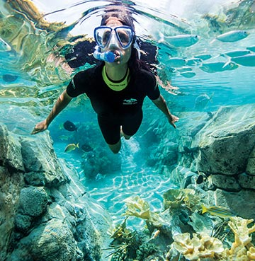 A woman snorkelling in Discovery Cove, Florida