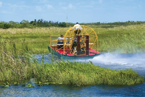 An Airboat ride through the Everglades, Florida