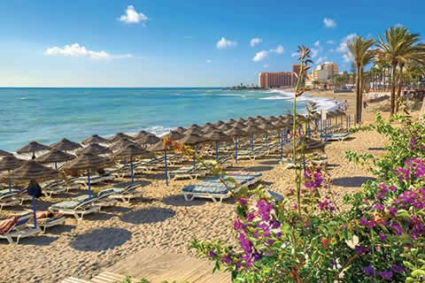 Golden beach with parasols and sunloungers