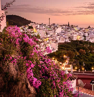 Bougainvillea drips down whitewashed houses at sunset in Frigiliana