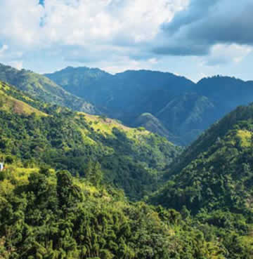 The beautifully green Blue Mountains on the island of Jamaica