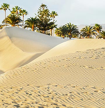 Rolling sand dunes at the beach, Gran Canaria