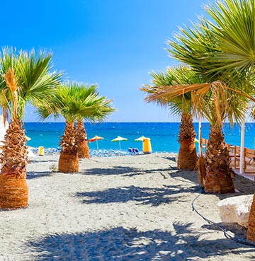 Palm-fringed white sands on Governor's Beach in Cyprus