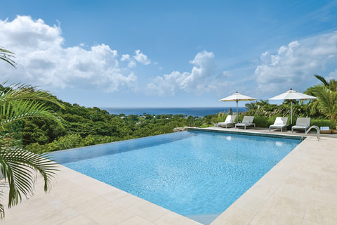 A sleek and modern infinity pool surrounded by luscious rainforest in Barbados