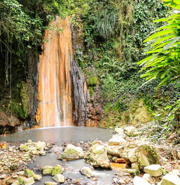 Diamond Falls, nestled between the luscious foliage from the botanical gardens