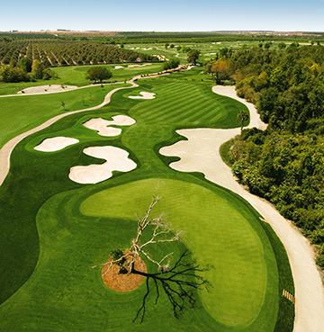 The International Course at Champions Gate, Orlando, Florida