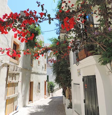 Flower-lined street in Ibiza Old Town