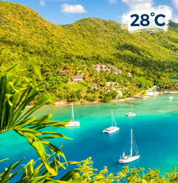 Luscious rainforest covers rolling hills down to the waters edge. Yachts bob on azure waters in the bay.