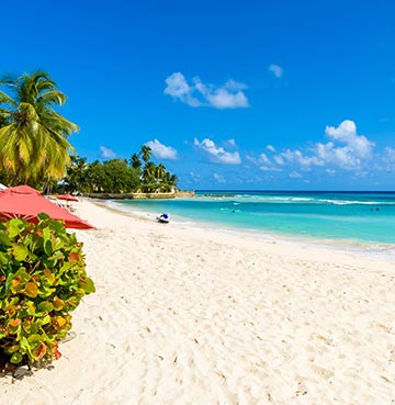 Powder-white sands of the Platinum Coast, Barbados. Fringed by luscious palm trees and lapped by turquoise waters