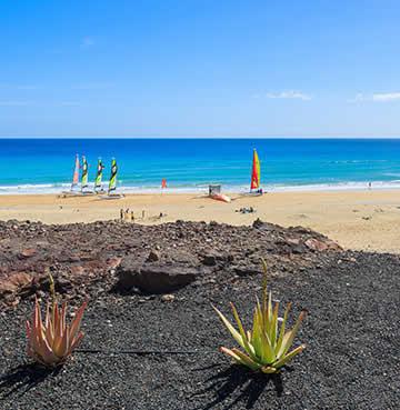 Windsurfing at the bay, Fuerteventura