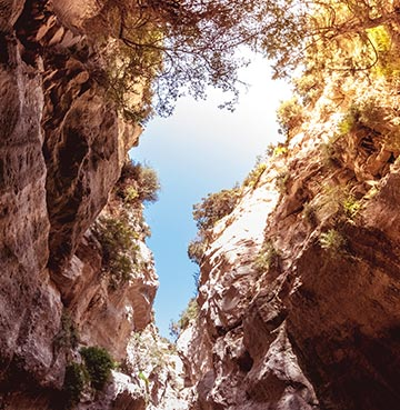 Looking up in the middle of Avakas Gorge in the Akamas Peninsula