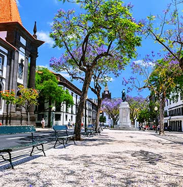 Colourful, traditional street in Funchal, Madeira.