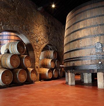 Wine cellar in Porto, Portugal