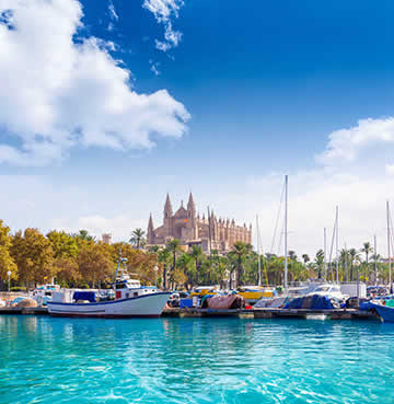 Palma cathedral stands proudly in the background, overlooking the harbour