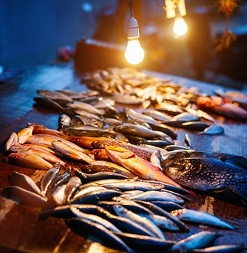 Festoon lights hang over fresh fish waiting to be prepared and served at a local market