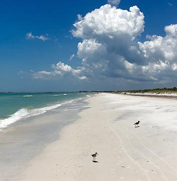 The white sands and crystal clear waters of Caladesi Island on Florida's Gulf Coast