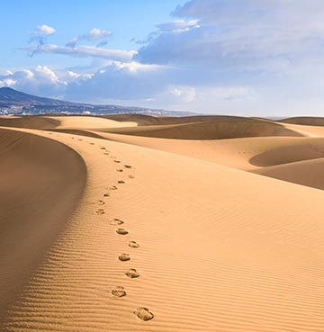 Sand dunes of Maspalomas on the Canary Island of Gran Canaria
