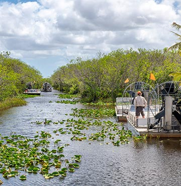 An airboat tour heading through the Everglades National Park on Florida's Gulf Coast