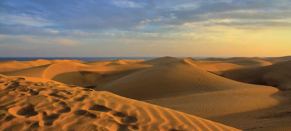 The dunes of Maspalomas in Gran Canaria