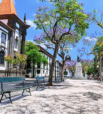 Street in Madeira with traditional architecture