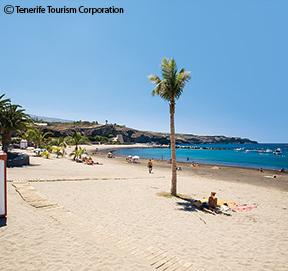 Playa del Duque Beach