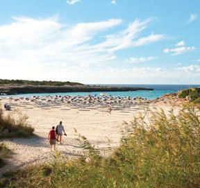 Cala En Bosch Beach