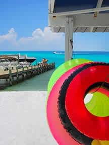 On the beach in Gulf Coast - Florida Image