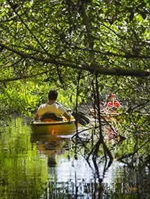 Outdoor pursuits in Gulf Coast - Florida Image