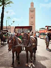 Discover local charm in Marrakech Image