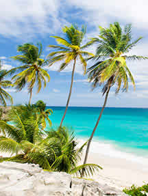 Beaches in Barbados Image