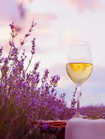 Wine in Provence Image